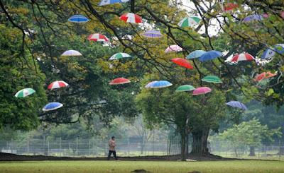 Tempat Wisata Istana Bogor Yang Mempesona