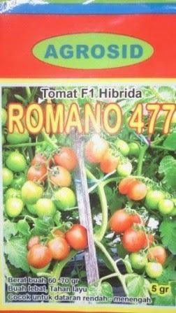 Benih, romano, Tomat Romano,tomat, tahan virus,kuning, keriting, unggul, dataran rendah, tinggi, petani, Tomat Romano murah, Agrosid