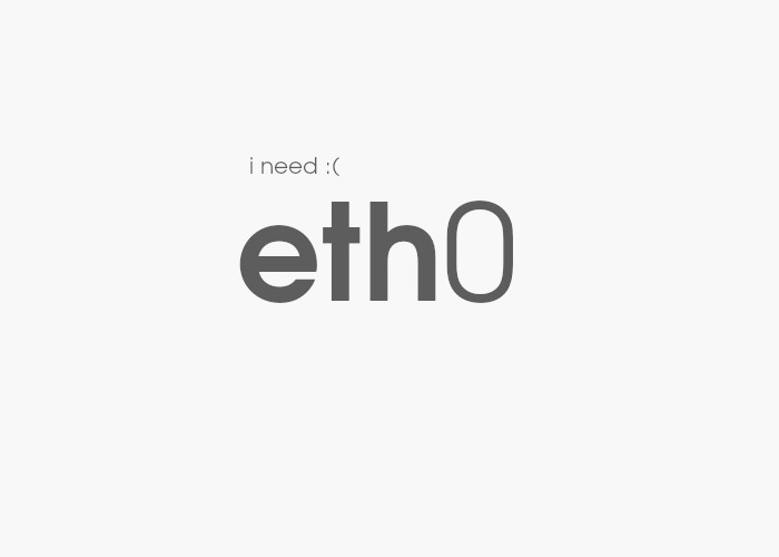 eth0 network interface