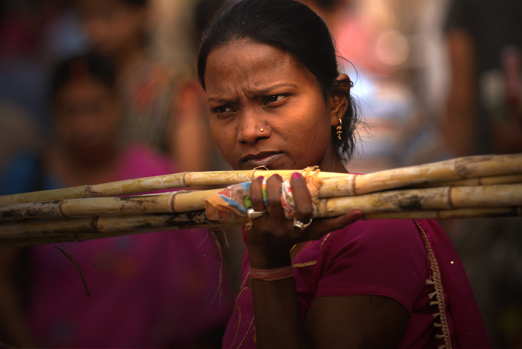 An Indian girl is carrying bamboo in Varanasi, a city that is sacred to Hindus and Jains and also one of the oldest continuously inhabited cities in the world.