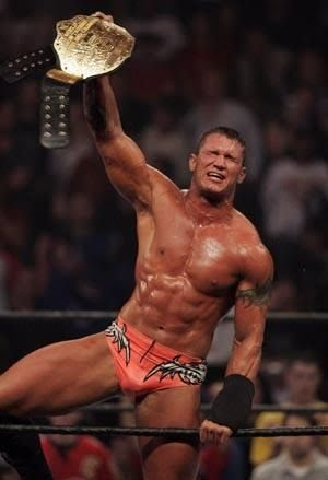 Thanks. Sexy randy orton naked all logical