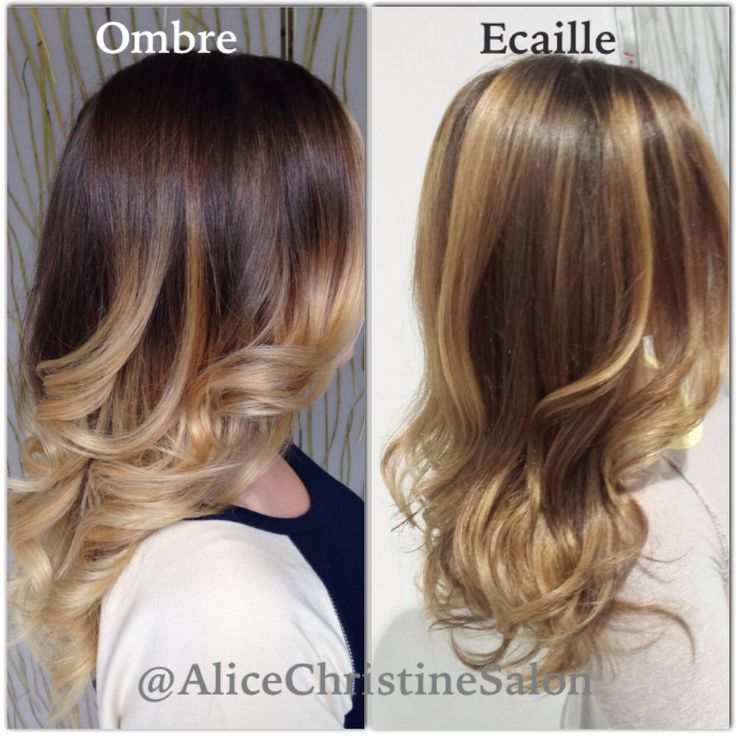 Ecaille hairstyles  The HairCut Web