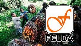 Peneroka FELDA memperoleh ganjaran daripada penyenaraian itu, bukan kerugian.
