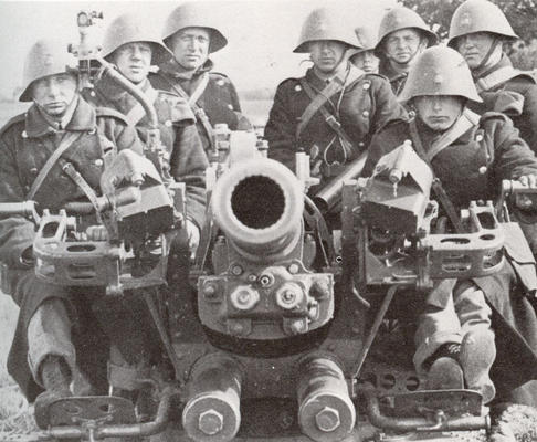 WW2 Danish Anti aircraft gun with crew