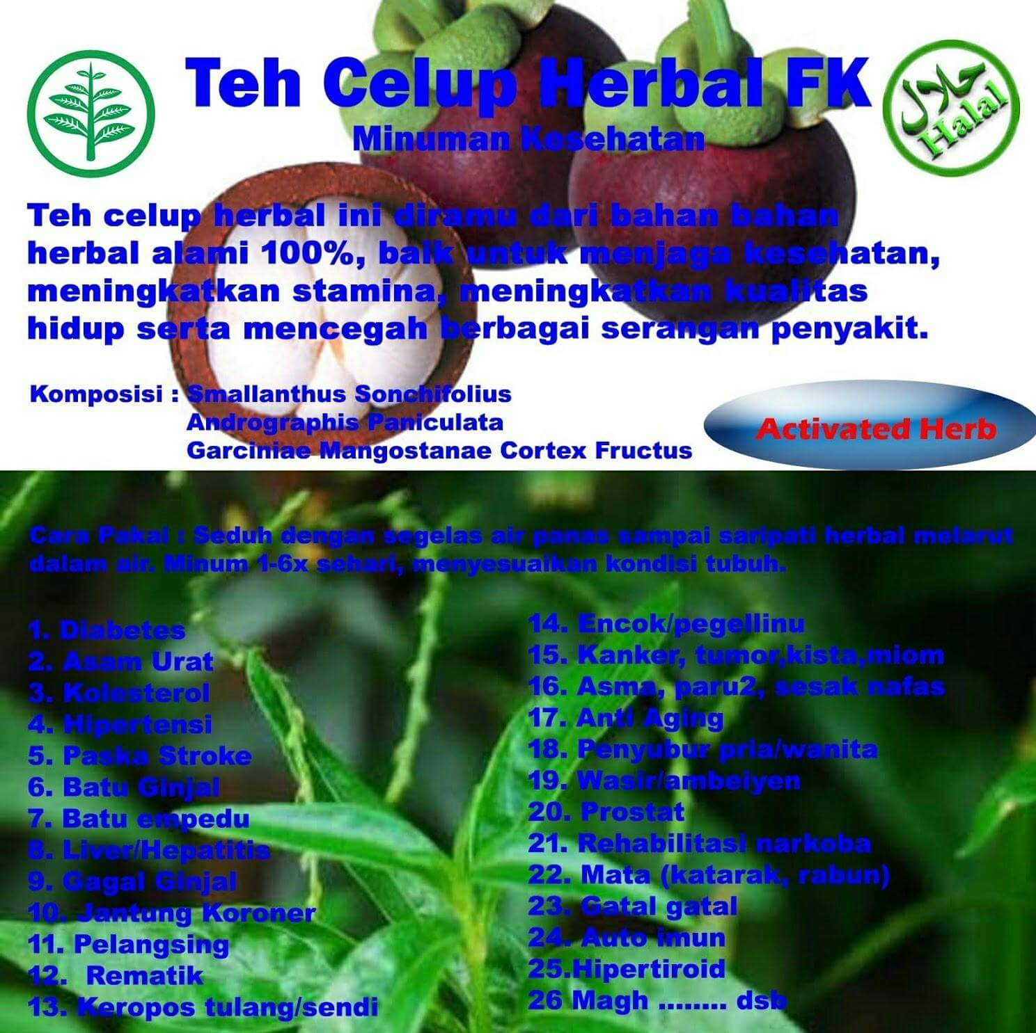 Teh Celup Herbal Fk: OBAT HERBAL