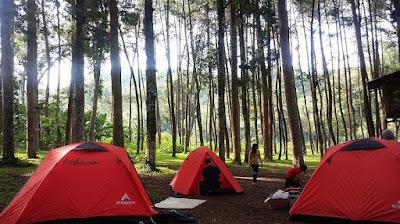 Lokasi dan Harga Tiket Masuk Bumi Perkemahan Ledok Ombo Terbaru Wisata Ledok Ombo Poncokusumo Malang
