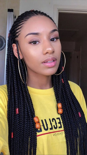 gorgeous fulani black braided