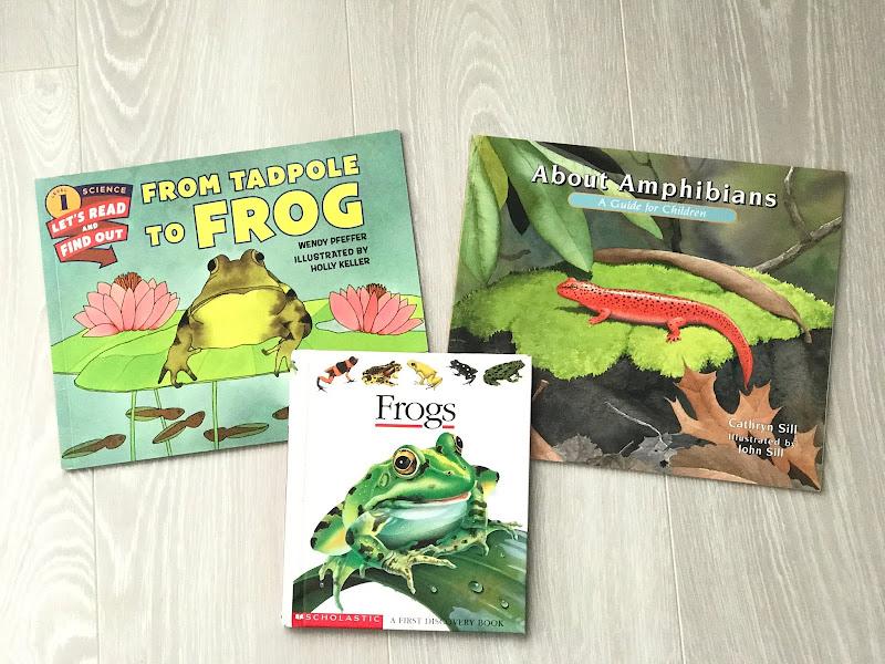 Frog Study Books