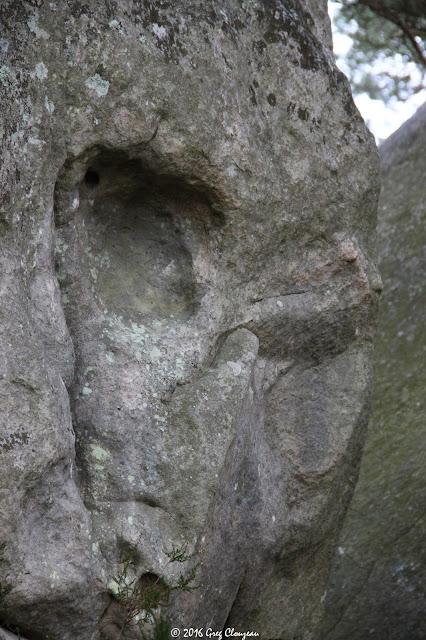 L'alien du Cuvier à Fontainebleau, (C) Greg Clouzeau