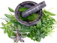 Artikel Obat Kanker Serviks Herbal