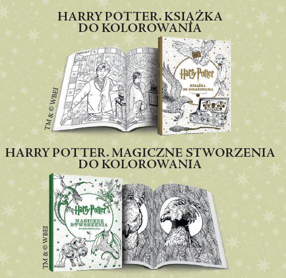 Zatracone W Innym świecie Weekend Z Harrym Potterem Krótko