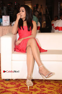 Actress Catherine Tresa Unveils Intex Air Conditioners  0173.jpg