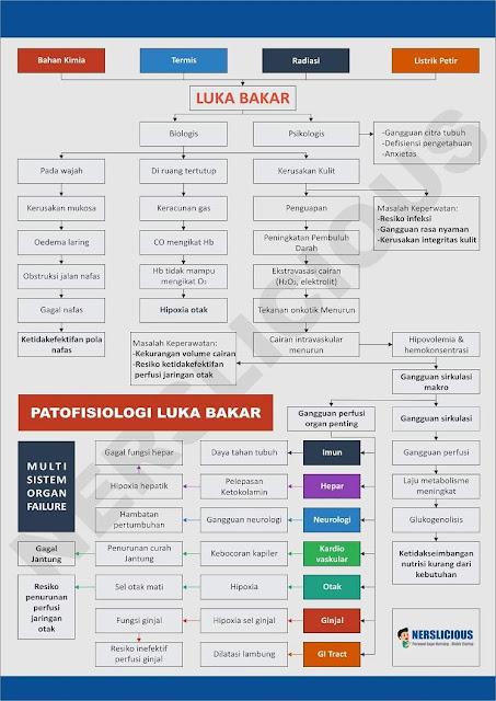 patofisiologi luka bakar pdf