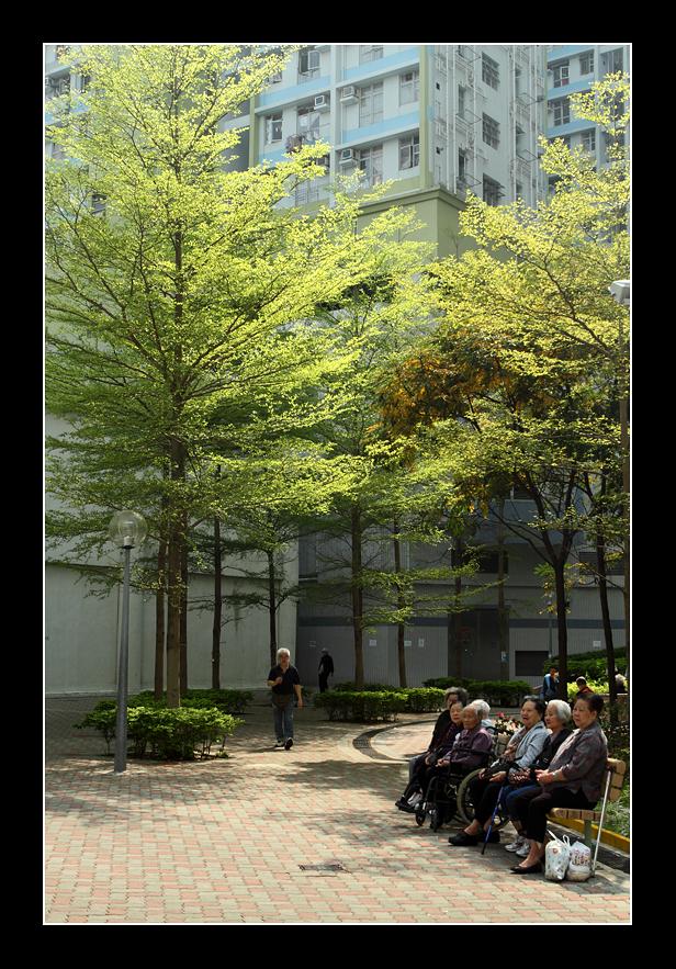山森影像: 花之走廊