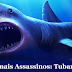 Animais Assassinos: #3 Tubarões