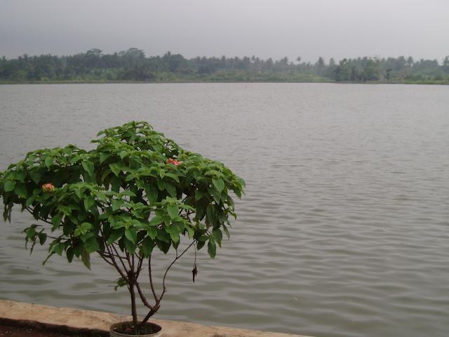 Setu Cilodong Disiapkan Jadi Destinasi Wisata Depok