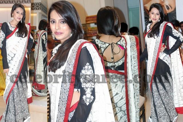 Border Red Saree Heavy Butti Bridal Work