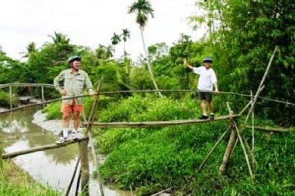 Jembatan Monyet di Vietnam