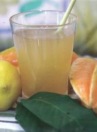 jus daun salam untuk obat diabetes, asam urat, hipertensi, kolesterol