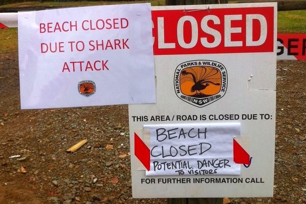 ataque tiburon australia 03