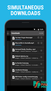 Downloader And Private Browser Premium APK