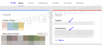 how to add introfuction in google plus profile about me section tab