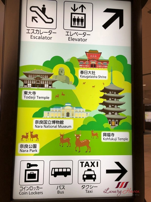 nara park sightseeing guide temple map