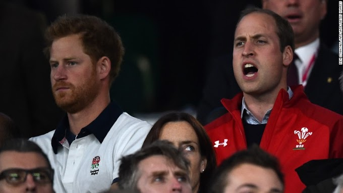 Prince William and Prince Harry replace Queen Elizabeth II in rugby roles