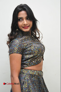 Actress Kamna Singh Latest Pictures at Thikka Audio Launch  0018