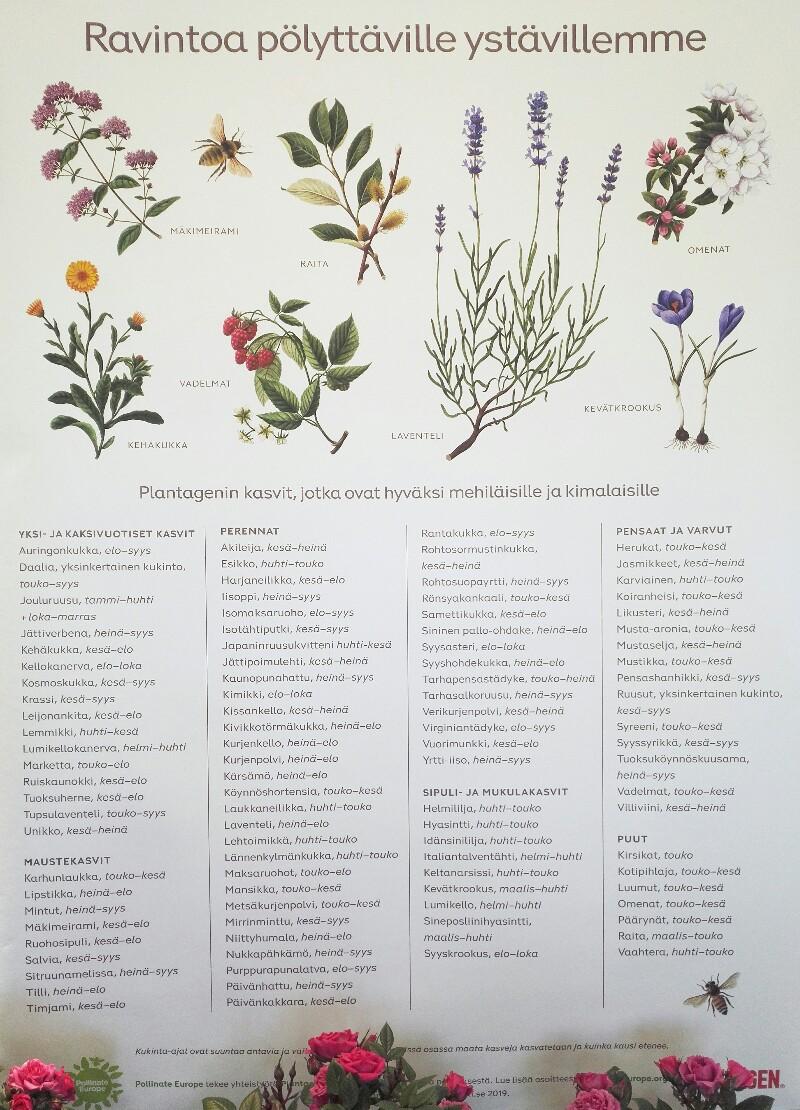 Pölyttäjät, puutarhakukat