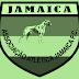 Amador – Jundiaí: Com baixo investimento, Jamaica avalia um 2017 dentro do esperado