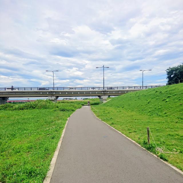 多摩川サイクリングロード 日野橋