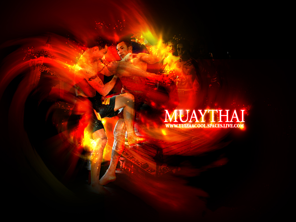 3d Kickboxing Wallpaper You Are The Infinite Muay Thai Posters