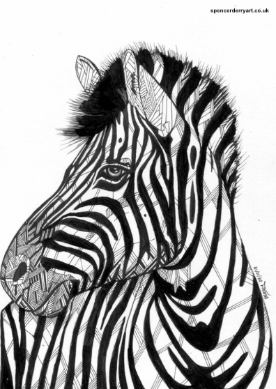 An original animal wild life art drawing. A stylised illustration of a Zebra, hand-drawn by British artist Spencer J. Derry in 2018. Artwork is Not Framed.