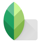 Snapseed Apk Editor review
