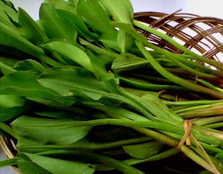 manfaat dari sayur genjer untuk tubuh