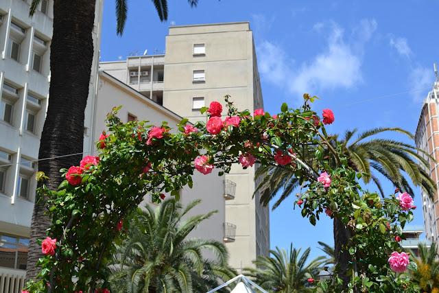 Il Centro in Fiore