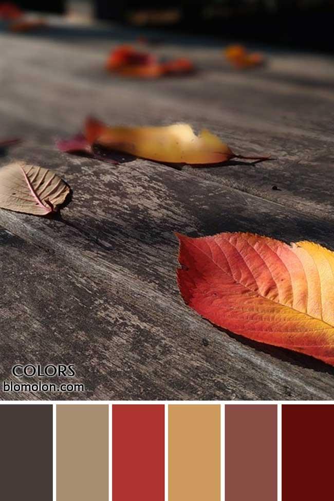 paletas_de_colores_22_novedades_en_colores_5