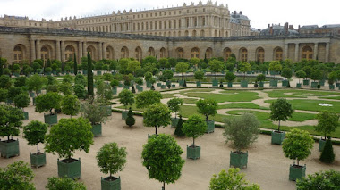 Las 'cajas de naranjos' de los jardines de Versalles