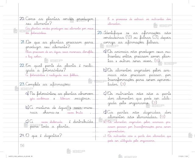 Caderno do Futuro 4 Ano Ciencias para Imprimir