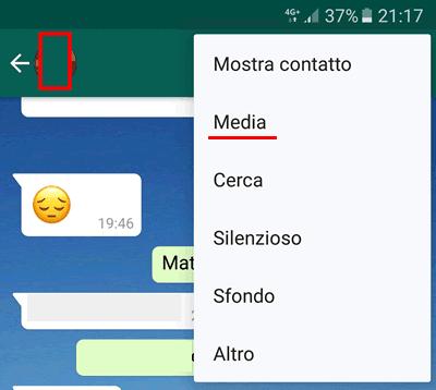 Come vedere i file scambiati con qualcuno su whatsapp