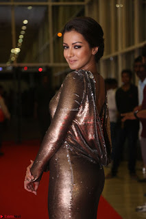 Actress Catherine Tresa in Golden Skin Tight Backless Gown at Gautam Nanda music launchi ~ Exclusive Celebrities Galleries 040.JPG