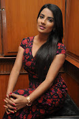 Jyothi Seth New sizzling photo shoot-thumbnail-6