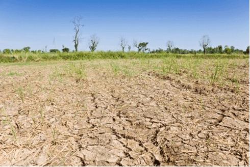 Dampak Pencemaran Tanah bagi Kesehatan