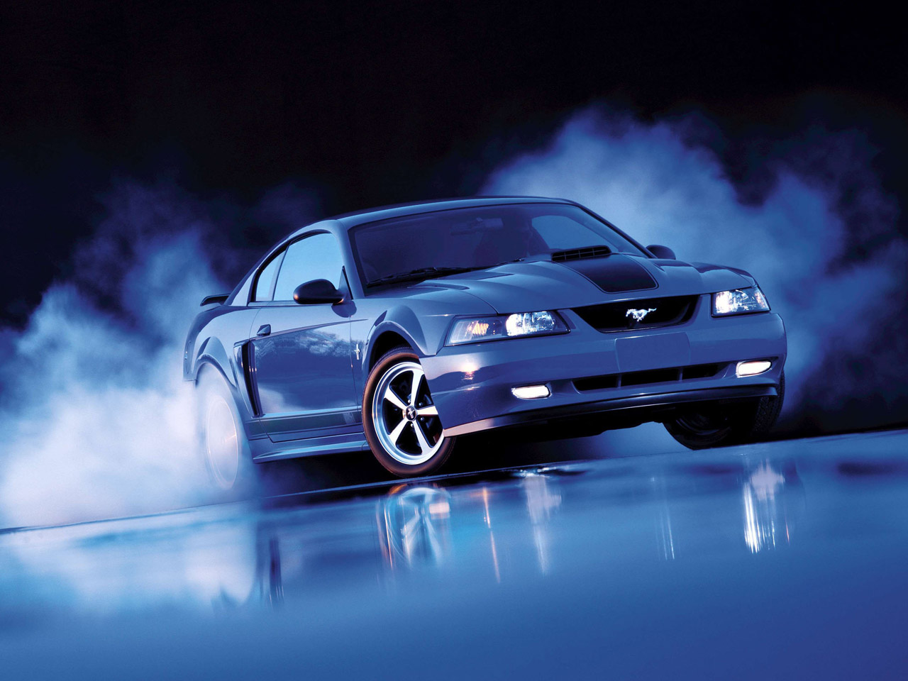 Ford Mustang Cobra Wallpapers | Beautiful Cool Cars Wallpapers