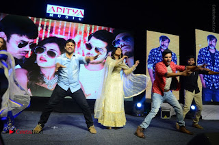 Nanna Nenu Na Boyfriends Telugu Movie Audio Launch Stills  0200.jpg