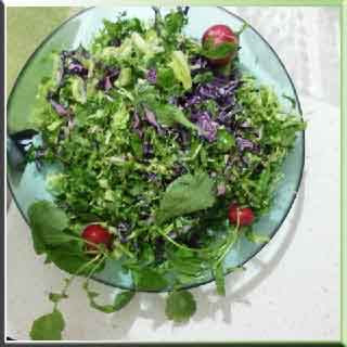 Salat Rezepte Salat Rezept Salat Salate Thunfisch-Salat, Hähnchen-Salat mit Joghurt Salate  рецепты салатов салат рецепт салата салатов салат из тунца, куриный салат с йогуртом салатов  salata tarifleri salata tarifi  salata çeşitleri  tavuklu salata  yoğurtlu salata ton balıklı salata salatalar  salad recipes salad recipe salad salads tuna salad, chicken salad with yogurt salads