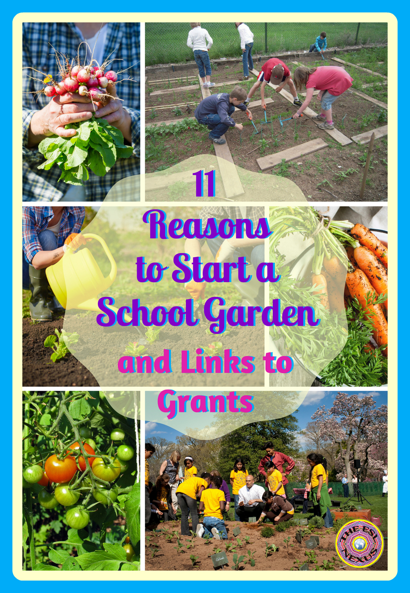 11 reasons you should plant a school garden, with links to info on how to start one and where to obtain funding for a school garden | The ESL Connection