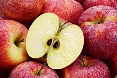 Apel Untuk Asam Urat