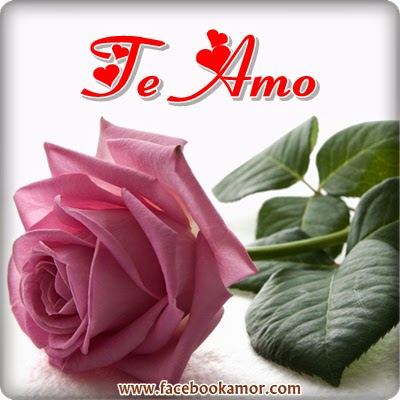 Imagen de rosa  Te amo